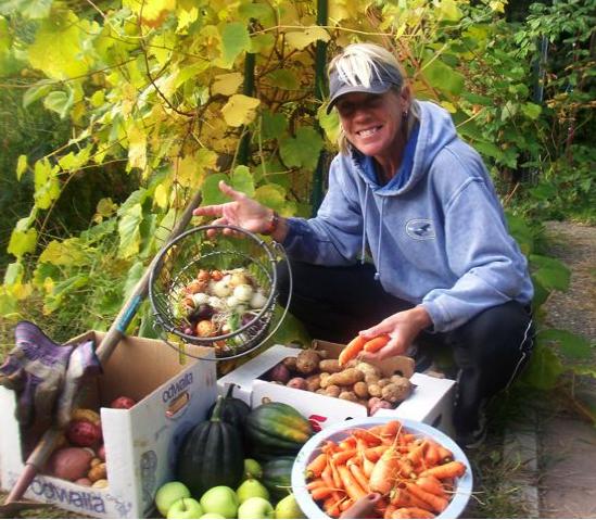 thanksgiving-harvest