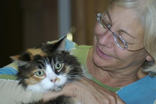 catspouse