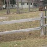 Healthy Fences, Happy Dogs By Elizabeth Bubitz