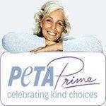 PETA Prime Is Now on Facebook! by Steve Martindale