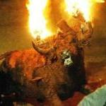 Bulls Tortured by Fire in Sadistic Spanish Festival! by Guest Blogger