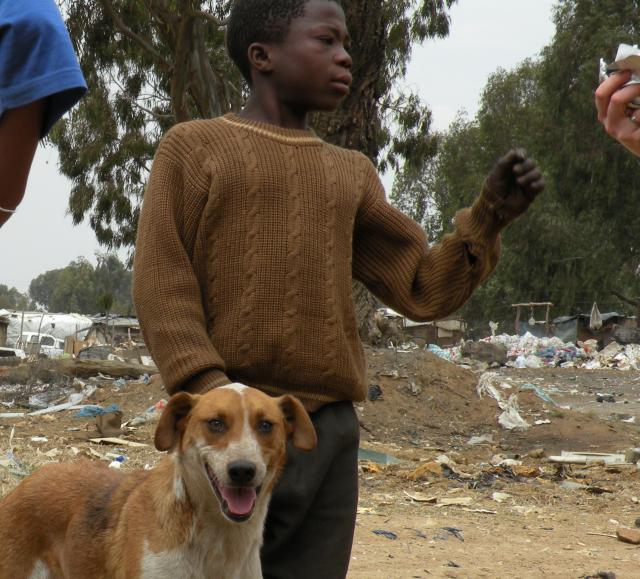Prime Inspirations: Gaone and Moses—Everyday Heroes for Animals by Steve Martindale
