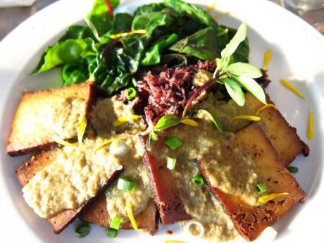 stonecat-cafe-grilled-maple-tofu