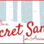 Be-a-Secret-Santa