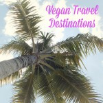 PETALiving-social-vegan-travel-destinations-palm1
