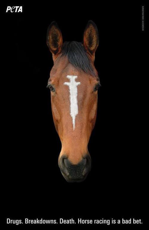 3276.Peta_5F00_HorsePoster_5F00_Mulranen_5F00_RGB