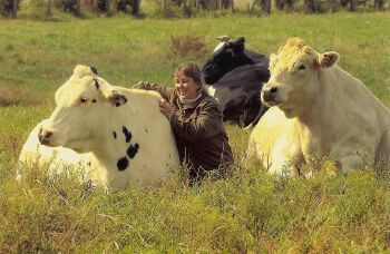The Cow That Could, And Did!:(With A Little Help From Her Friends)